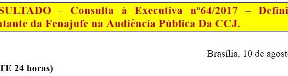 [Discussão-Executiva] 64. RESULTADO - Consulta à Executiva nº64/2017 – Definição do representante da