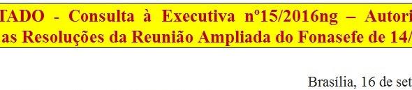 15. Consulta à Executiva nº15/2016ng - Autorização para encaminhar as Resoluções da Reunião Ampliada
