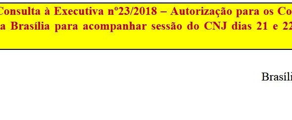 [Discussão-Executiva] 23. RESULTADO - Consulta à Executiva nº23/2018 – Autorização para os Coordenad