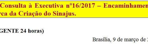 [Discussão-Executiva] 16. Consulta à Executiva nº16/2017 – Encaminhamentos acerca da Criação do Sina