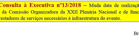 [Discussão-Executiva] 13. RESULTADO - Consulta à Executiva nº13/2018 – Muda data de realização da pl