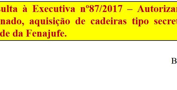 [Discussão-Executiva] 87. RESULTADO - Consulta à Executiva nº87/2017 – Autorizar limpeza e aquisição