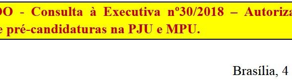 18 de 976   [Discussão-Executiva] 30. RESULTADO - Consulta à Executiva nº30/2018 – Autoriza realizaç