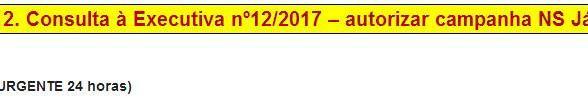 [Discussão-Executiva] 12. Consulta à Executiva nº12/2017 - autorizar campanha NS Já