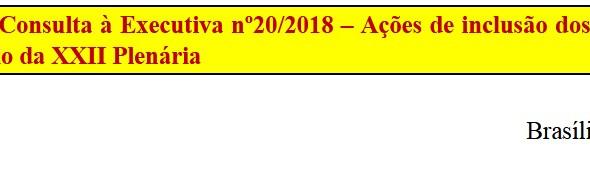 [Discussão-Executiva] 20. RESULTADO - Consulta à Executiva nº20/2018 – Ações de inclusão dos sindica