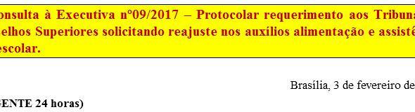 [Discussão-Executiva] 9. Consulta à Executiva nº09/2017 – Protocolar requerimento aos Tribunais e Co