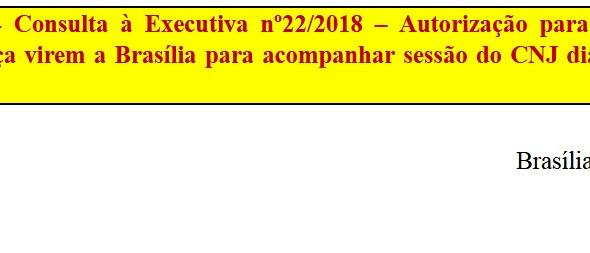 [Discussão-Executiva] 22. RESULTADO - Consulta à Executiva nº22/2018 – Autorização para os Coordenad