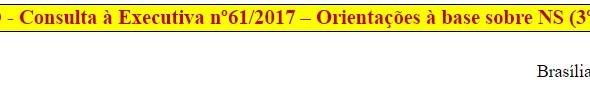 [Discussão-Executiva] 61. RESULTADO - Consulta à Executiva nº61/2017 – Orientações à base sobre NS (