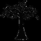2020-01-02 Droit de l'environnement.png