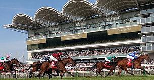 newmarket-racecourse_3017535.jpg