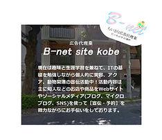 広告代理業,ビーネットサイト神戸,b-net site kobe,神戸市,美容,ネイル,動物,アイドル