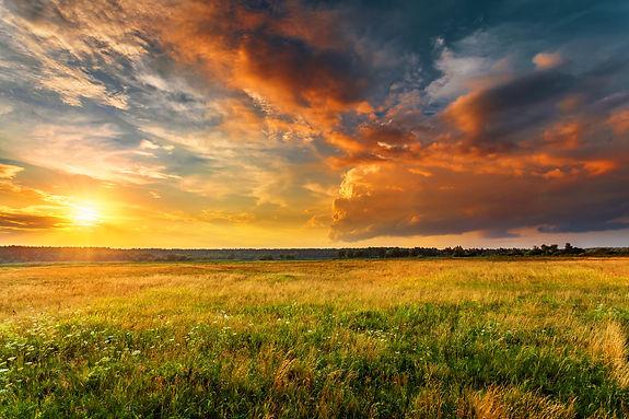 Sunset_Trista Haggerty.jpg