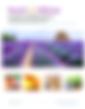Screen Shot 2020-03-10 at 7.35.57 AM.png