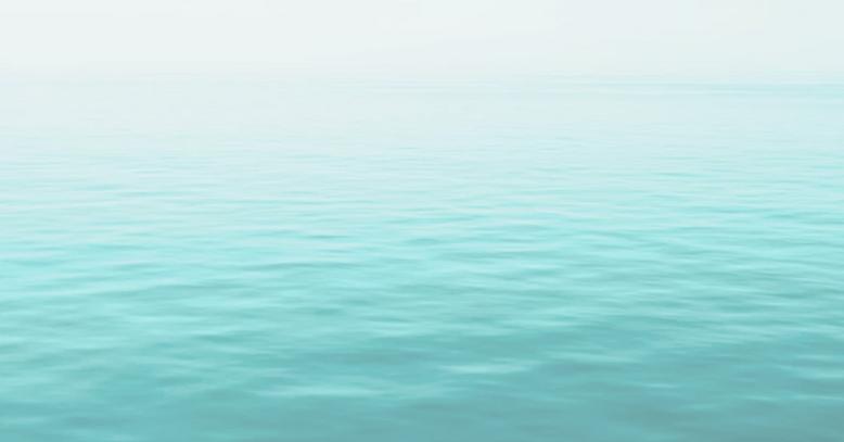 screenshot-editor.wix.com-2021.03.22-16_