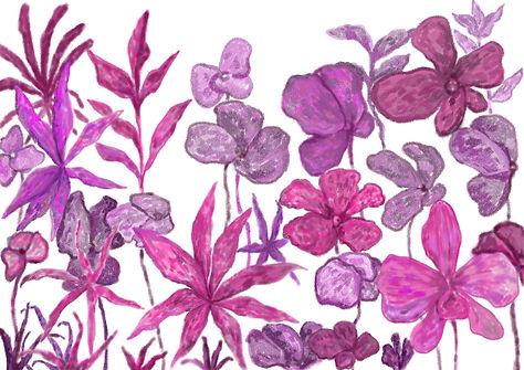 Pink Orchids copy.jpg