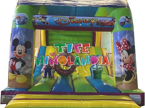 Tobogan Disney Con techo