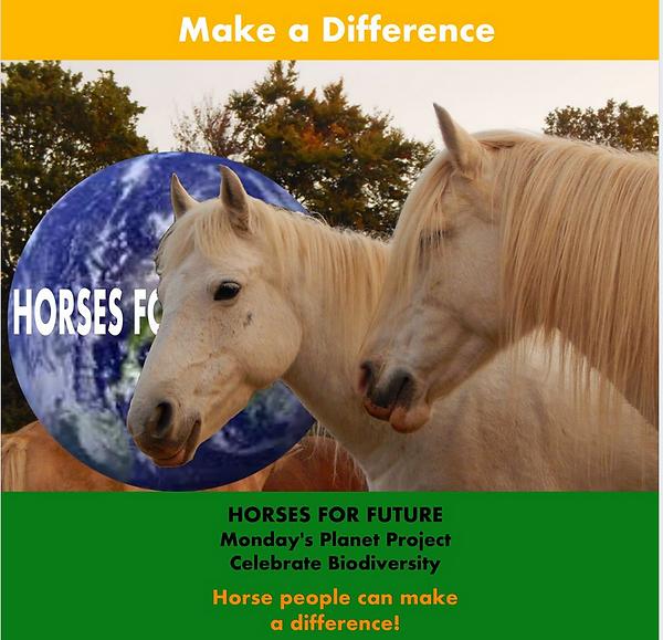 Horses for Future Biodiversity two white