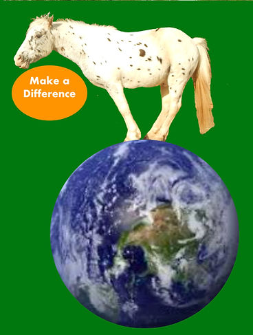Horse standing on planet only.jpg