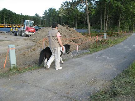 IMG_1993 Panda Ann construction.JPG