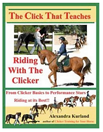 Riding book cover 2.png
