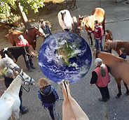 Horses for Future horses around planet.j