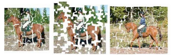 jig saw puzzle riding book.png