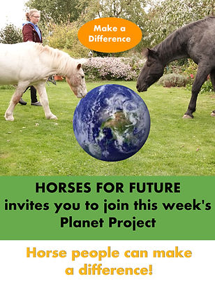 Horses for future Project 2.jpg