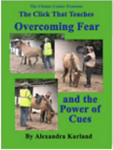 Lesson 9 Overcoming Fear outside cover.p
