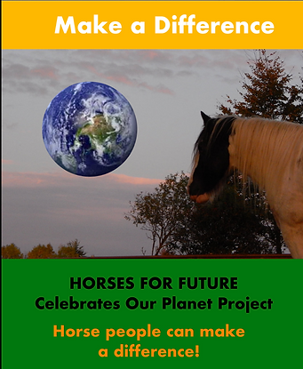 Horses for Future horses looking at plan