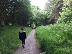 IMG_4764 Shropshire pathway 6_18.jpg