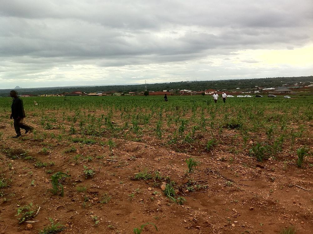 Area 43, Lilongwe, Malawi