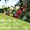 Thumbnail: 東ティモール🇹🇱レブドゥ・レテン 100g シティロースト