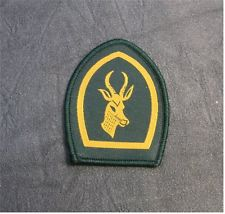 Achieve Springbok Scout