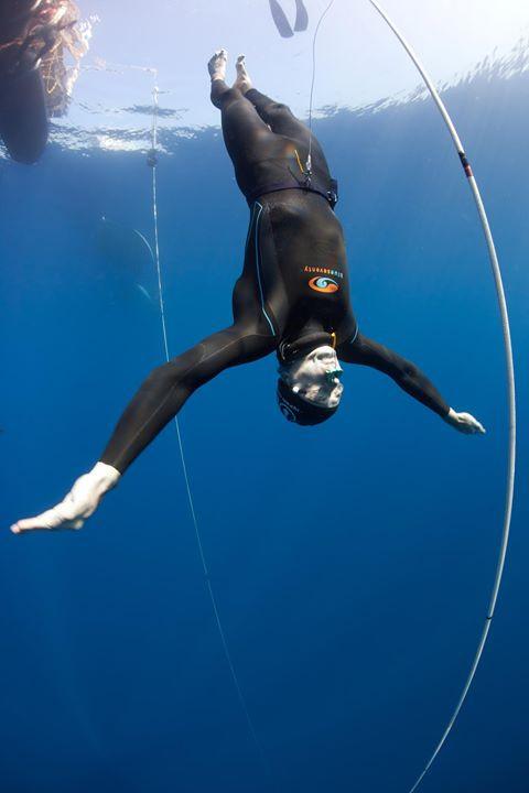 Freedive.jpg