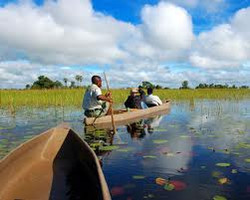 TO DO: Okavango canoe safari