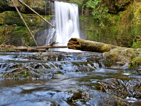 Hiking and Photographing Silver Falls State Park