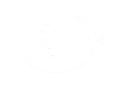 bird-logo-euclidean-vector-icon-twitter-