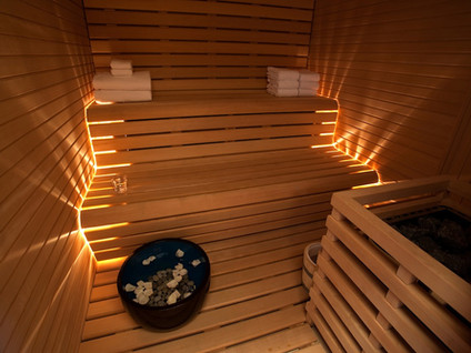 A Spotlight on Saunas - An Important Detox Healing Tool!