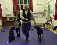 Dog training Warwickshire