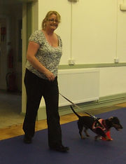 Dog training Evesham
