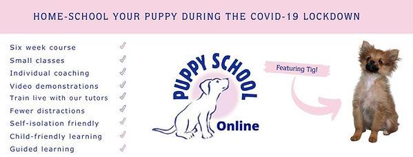Puppy Class Pershore, Puppy Class Evesham, Puppy Class Broadway