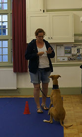 Dog Training Pershore