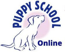 Virtual Puppy School