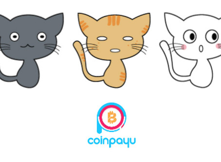 Catch a Cat Promo by CoinPayU