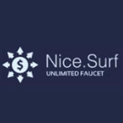 NiceSurf Logo