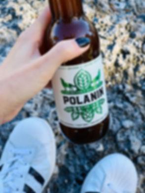 polanin_ipa.jpeg
