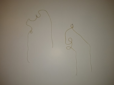 fio-desenho parede