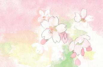 桜始めて開く(さくらはじめてひらく)
