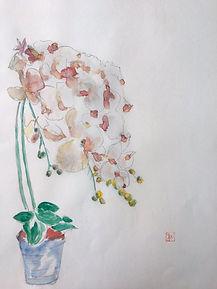 rokuro-0-600.jpg
