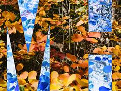 autumn coloring 2